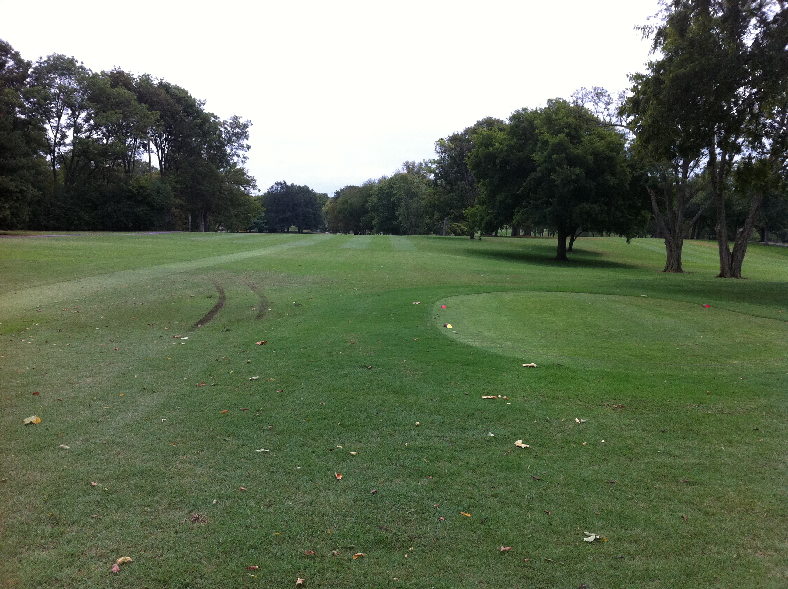 Cart Tracks Next to a Tee on Carts on Path Rule