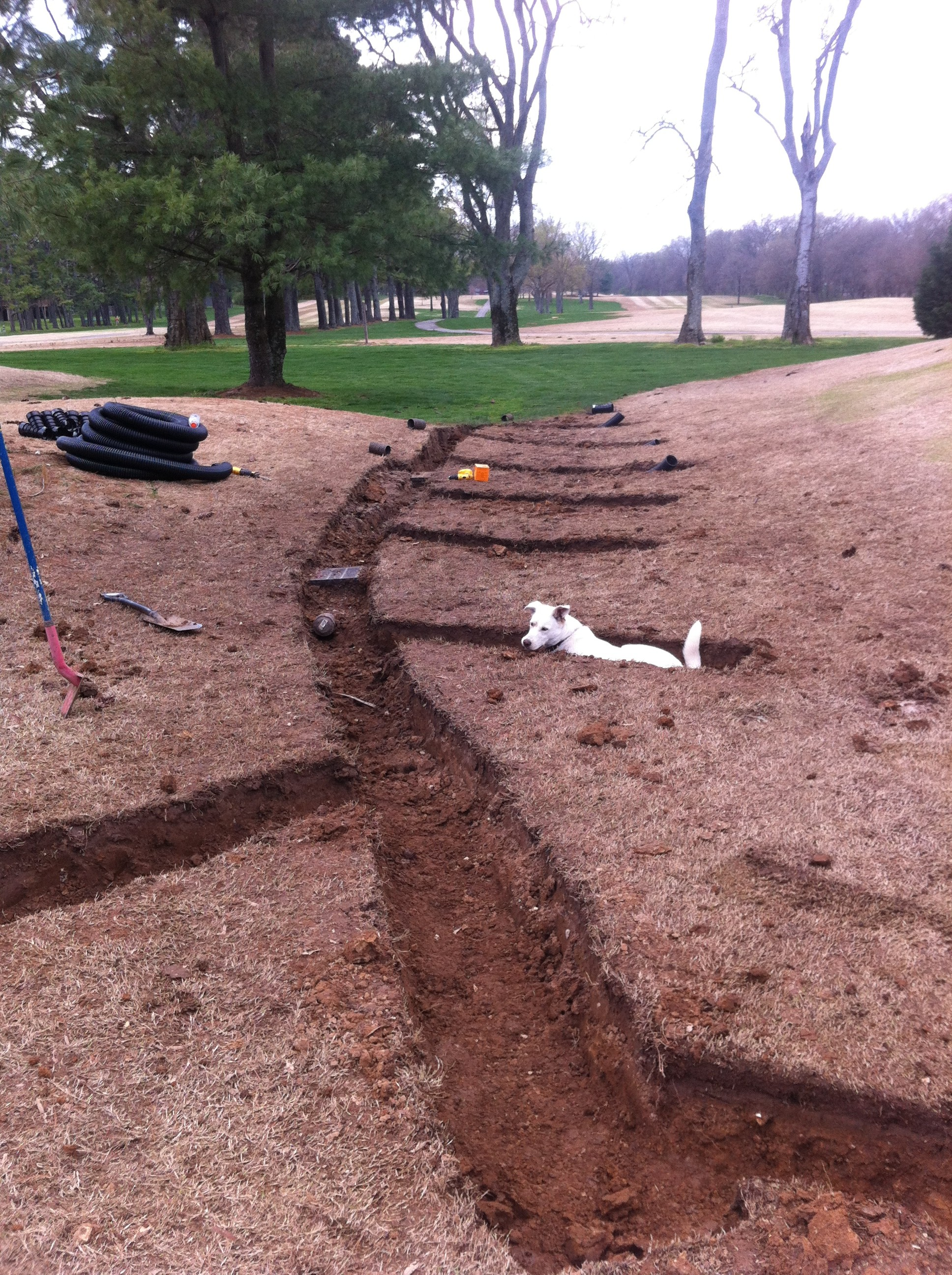 Regrading and Adding Extensions