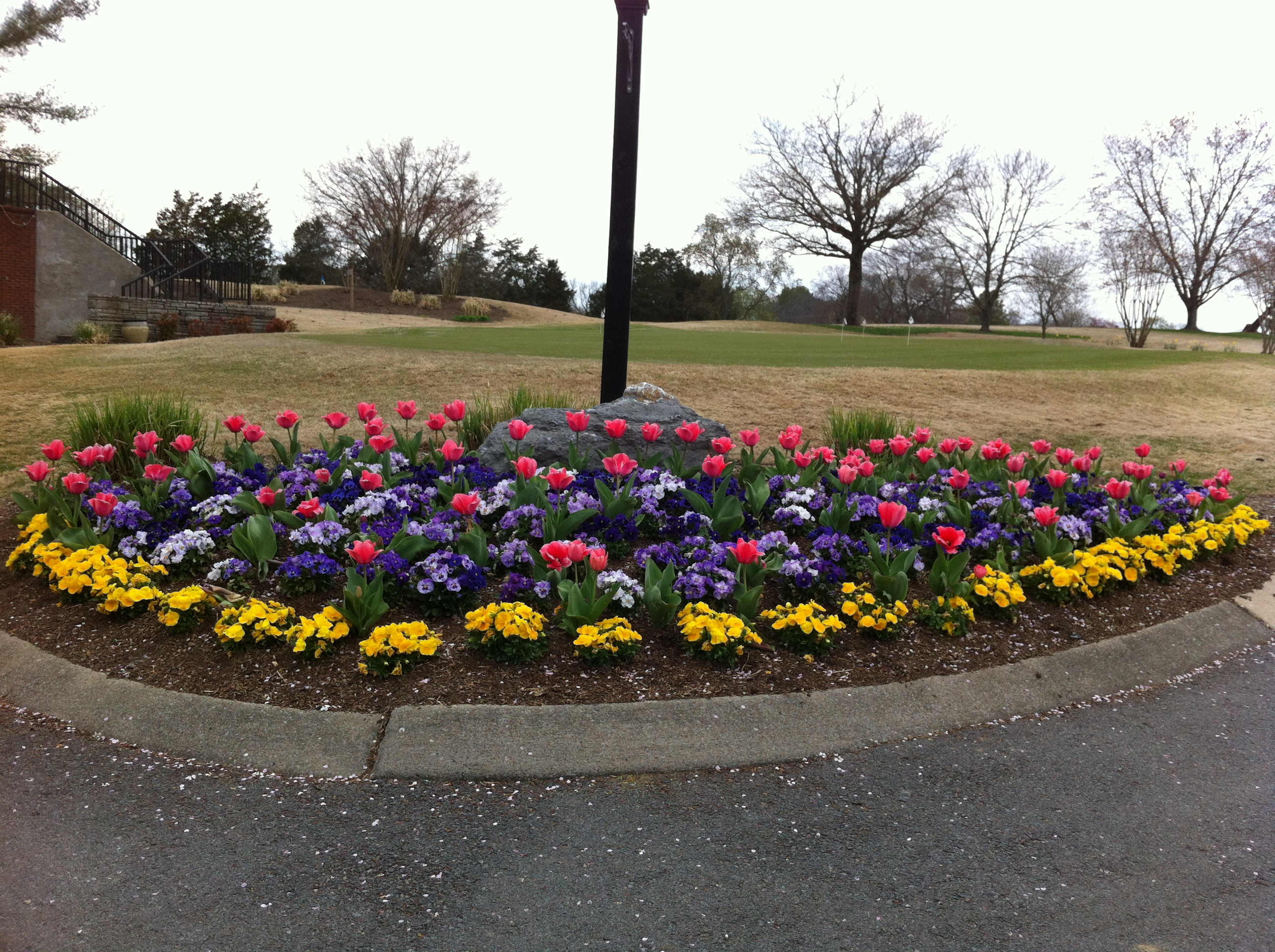 Annuals 007 Bluegrass Yacht Amp Country Club Golf Course