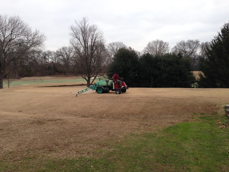 Spraying for Winter Weeds